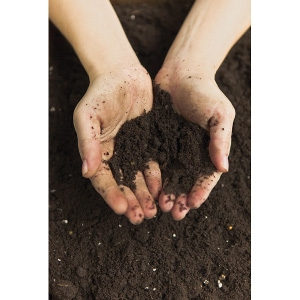 Top Soil 40lb Bag $1.99