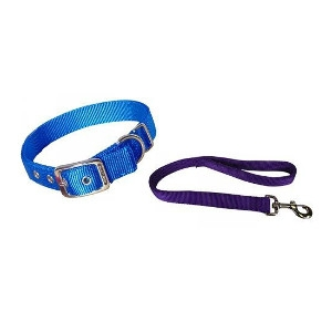 20% Off Pet Leashes & Collars