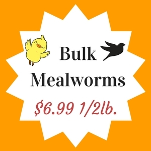 Mealworms $6.99/1/2pound