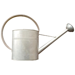 Vintage Galvanized Watering Can $29.99