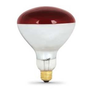 250 Watt Incandescent R40 Heat Lamp