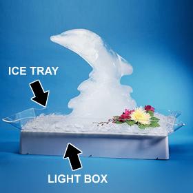 Ice Sculptures Now $40