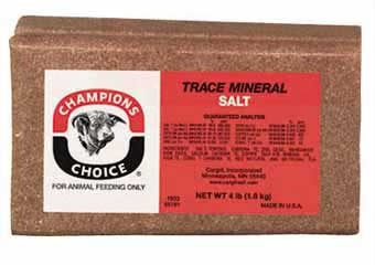 Champions Choice Trace Mineral Brick 4 Lb., Case of 9