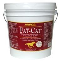Equine Fat-Cat Body Builder