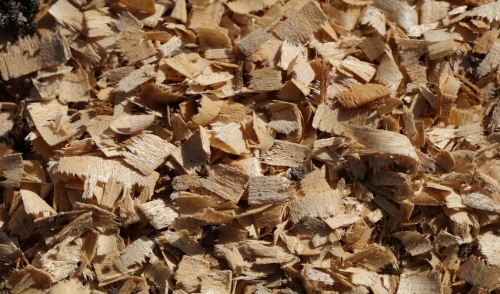 Compost with Wood Chips