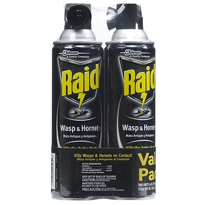 $7.99 for Raid Wasp & Hornet Killer, 2-Pk.