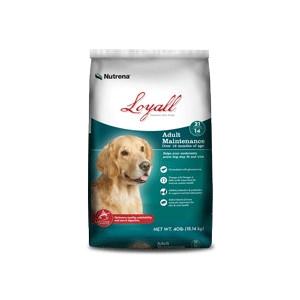 $4 Off Loyall Adult Maintenance Dog Food 40lb