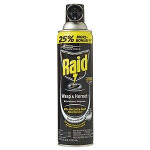 Sale $4.99 Raid Wasp & Hornet Aerosol, 17.5-oz.