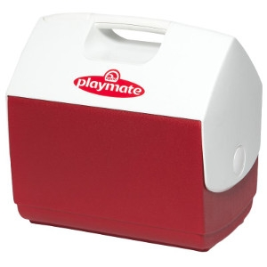 Playmate® Ice Chest