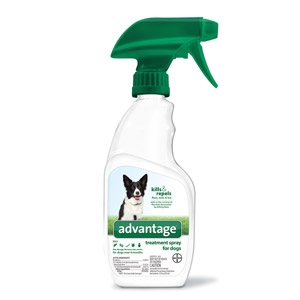 BayerDVM® Advantage® AG Treatment 24 Ounce Spray for Dogs