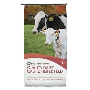 Southern States Intensity 22% Calf Starter (BVT) Medicated 50lb