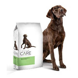 Diamond Care Sensitive Skin Formula for Adult Dogs 25 lb.
