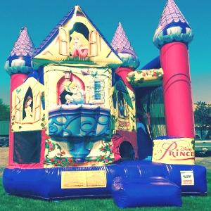 3-D Disney Princess Backyard Bouncer