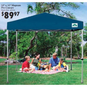 Instant Canopy: $69.95