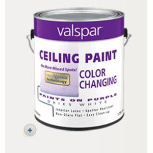 Color Changing Ceiling Paint: $21.99