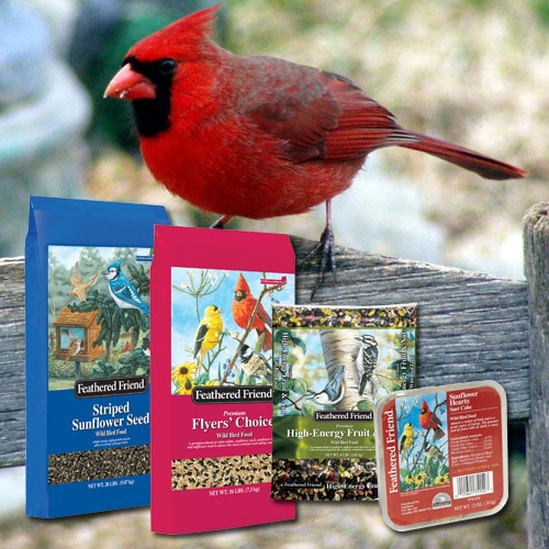 Feathered Friend Customer Loyalty Program