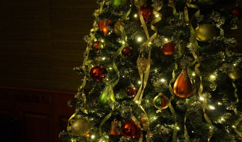 Have a Tree-mendous (and SAFE) Holiday