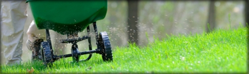 Keep your lawn looking great!