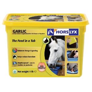 Garlic Horslyx Balancer