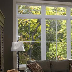 ViWinTech Vinyl Replacement Windows