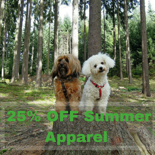 25% OFF Summer Apparel