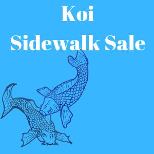 Koi Sidewalk Sale
