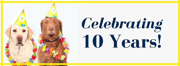 Celebrate 10 Years!