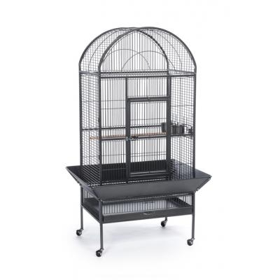 50% Off Any Wrought Iron Cage w/ Purchase of Bird