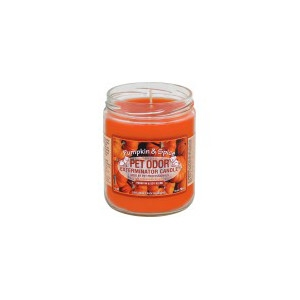 Pet Odor Exterminator Candle Pumpkin & Spice Scent