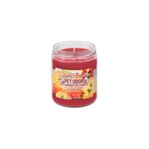 Pet Odor Exterminator Candle Apple Pumpkin Scent