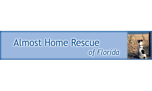 Almost Home Dog Rescue