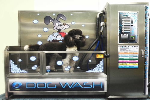 DIY Dog Wash