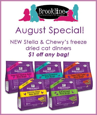 Check out this New August Special!