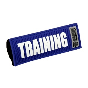 'Training' Canine Friendly Bark Notes, Blue