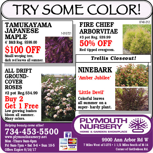 View Our Sales Ad