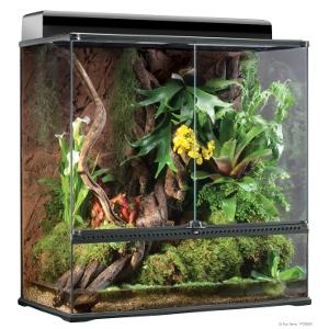 Exo Terra Glass Terrarium- Large
