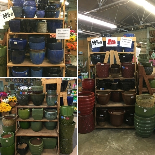 Pots & Containers are Marked Down!