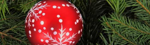Buy Your Christmas Tree Online