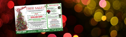 Christmas Tree Sale!!