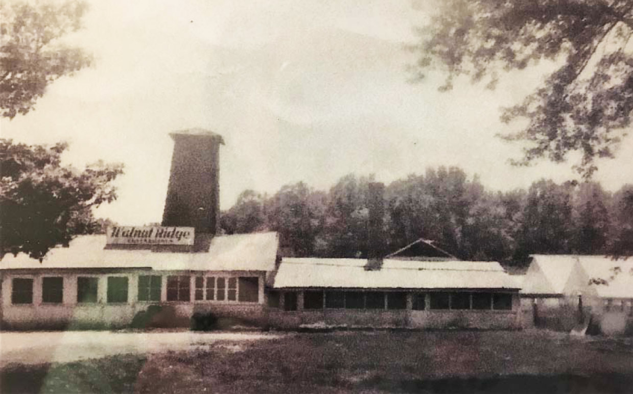 1953 Walnut Ridge Greenhouses Main Focus Was As A Whole Supplier To The Retail Florist Trade In Surrounding Area However There New Trend