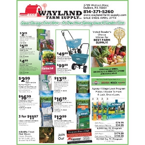 April Sales Flyer