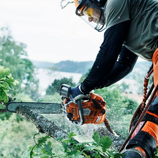 $50 Rebate Husqvarna XP Chainsaw