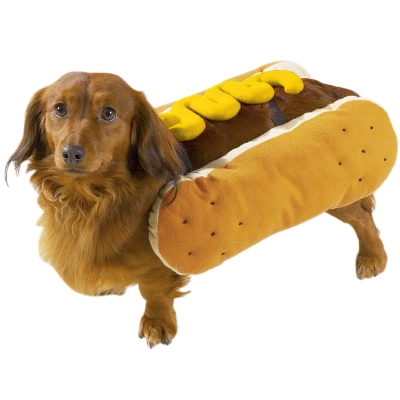 25% OFF all Dog Halloween Costumes