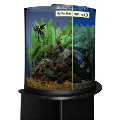 Pet supplies in bermuda aquatic store dog food store in for Fish tank and stand combo