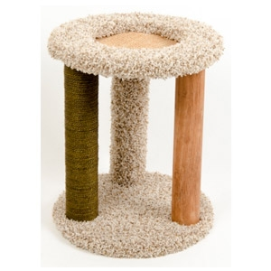 Cat Carpet Playground-N-Lounge