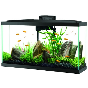 Aqueon Widescreen 16 Gallon LED Aquarium