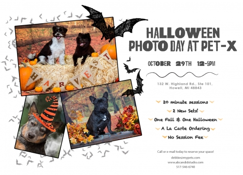 Halloween Photo Day at Pet-X