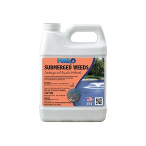 Pond2o Submerged Weed Control