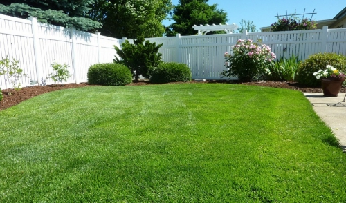 Best Yard Projects for Summer Weather