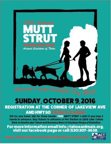 Pre-Order tickets for the 12th annual Mutt Strut!